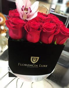 Florencia Luxe